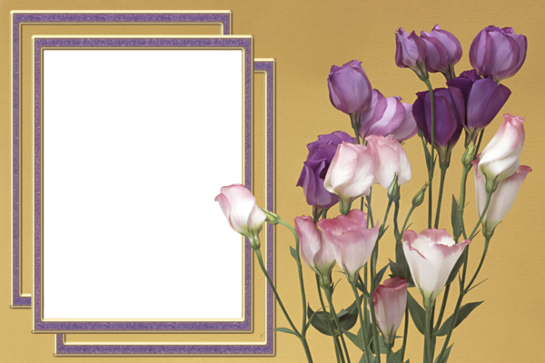 cadre avec fleur 10. Black Bedroom Furniture Sets. Home Design Ideas